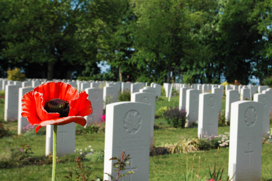 The Canadian cemetery in Beny-sur-Mer, Normandy, France. Steps away from Juno beach, where the Canadians landed on D-Day, June 6, 1944, the grounds are well-kept and have been given to Canada in perpetuity, by the government of France. This image shows a wild poppy in the foreground, with the Canadian graves fading away into the background.